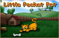 Little Pocket Pet