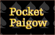 Pocket Paigow